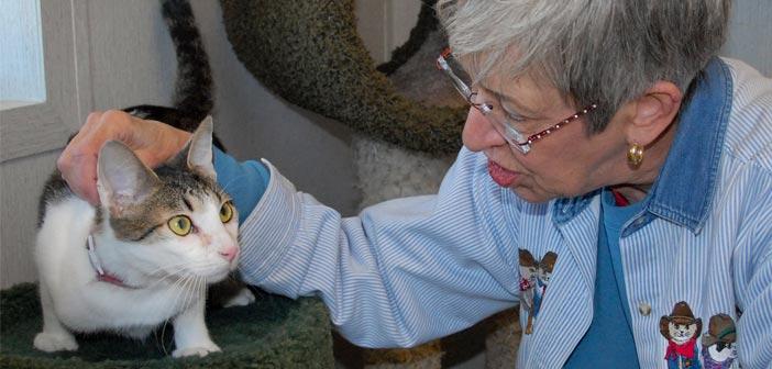 Eglin Pet Welfare Center adds ward, MSG support