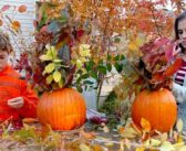 Head outdoors for quick Thanksgiving decorations