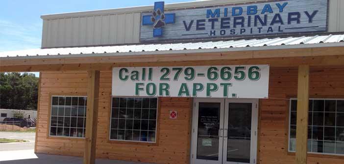 midbay veterinary hospital