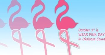 wear pink day niceville fl