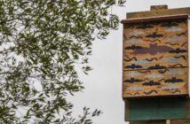 eglin bat house niceville