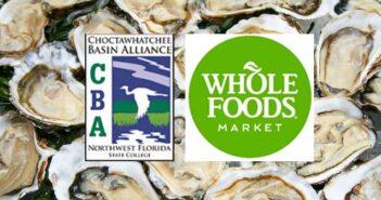 Whoe Foods oyster destin niceville