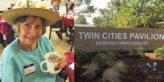 twin cities pavilion niceville