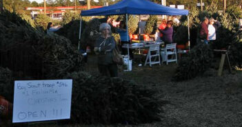 niceville christmas tree sale troop 546