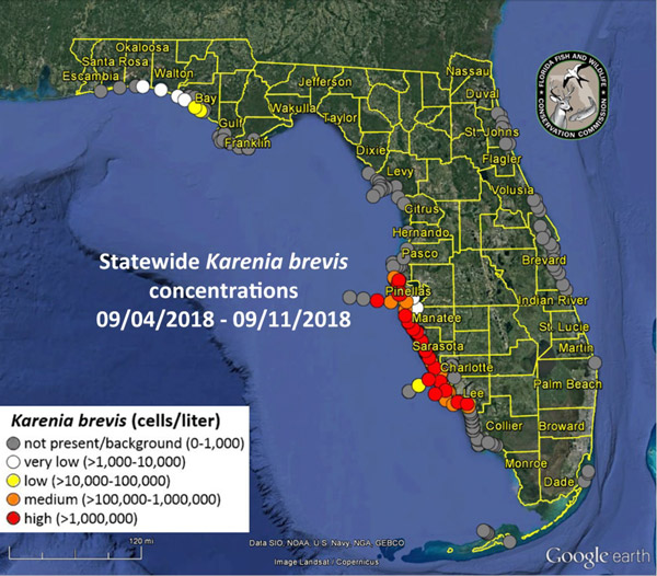 niceville northwest florida red tide map
