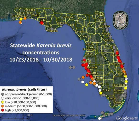 niceville red tide map northwest florida