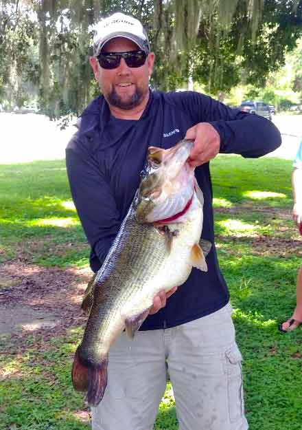 fwc hall of fame largemouth bass florida chad dorland