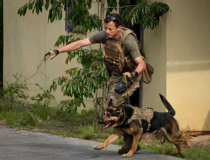 Military Working Dog competition eglin air force base