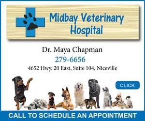 midbay veterinary hospital niceville