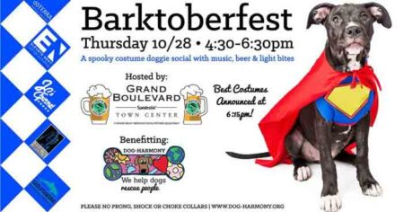 dog harmony barktoberfest 2021